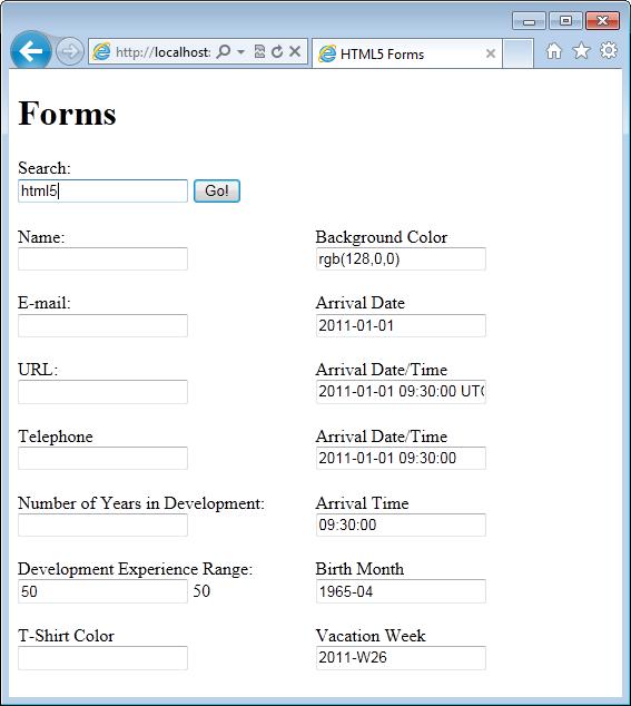 Figure 3: New input types in Internet Explorer 9.